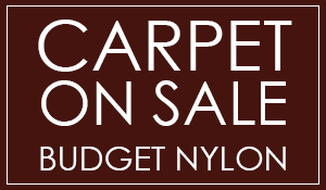 Budget Nylon Carpet $1.99 sq.ft. INSTALLED at Abbey Carpet & Tile in Northglenn!